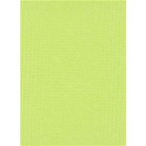 Erismann Childs Kids Wallpaper Roll - 21-in - Green