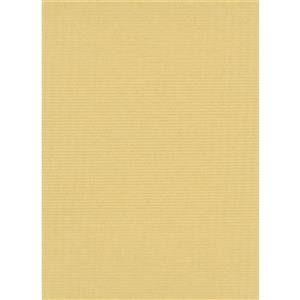 Erismann Childs Kids Wallpaper Roll - 21-in - Yellow