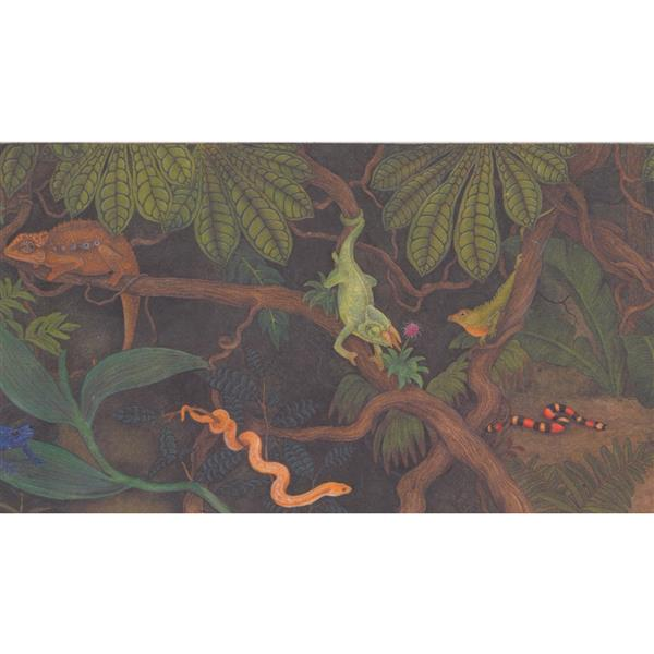 Retro Art Kids Jungle Wallpaper Border - Multicoloured