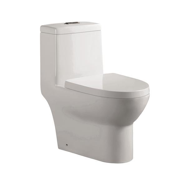 Toilette monobloc Arielle en céramique blanche