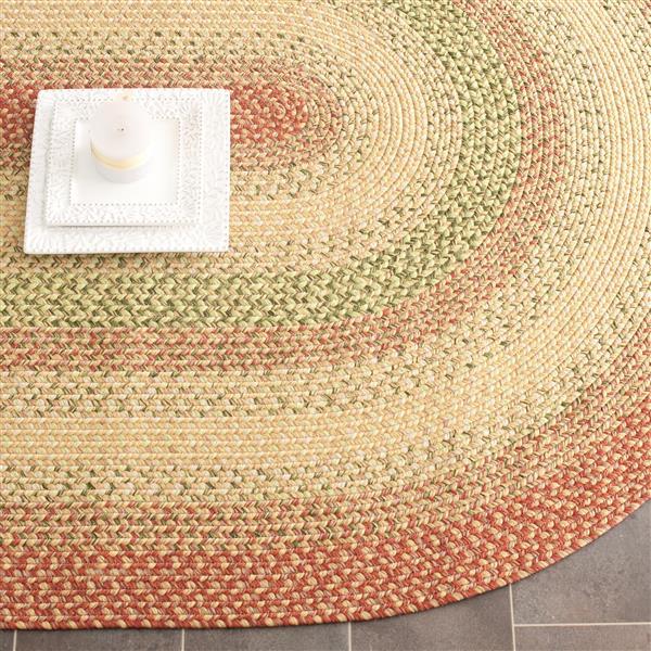 Safavieh Braided Stripe Rug - 4' x 6' - Cotton - Rust