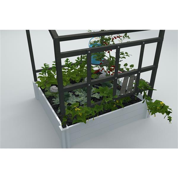 Jardin et mini serre avec support pour plantes, 4' x 4'