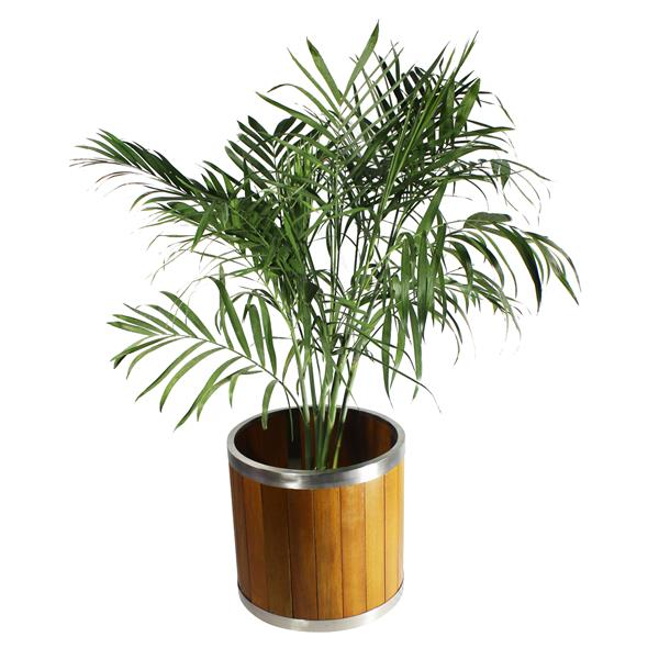 Leisure Season Round Planter - 12-in x 12-in - Wood - Brown