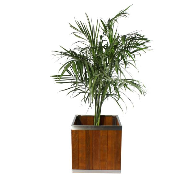 Leisure Season Square Planter - 10-in x 10-in - Wood - Brown
