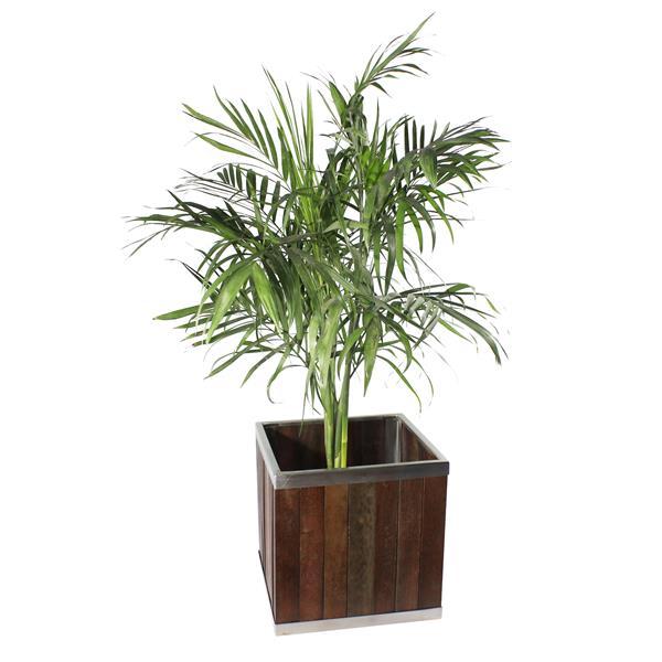Leisure Season Square Planter - 14-in x 14-in - Wood - Dark Brown