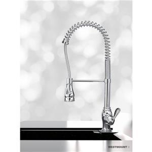 Denver Kitchen Faucet Pull-Down - Chrome - 23