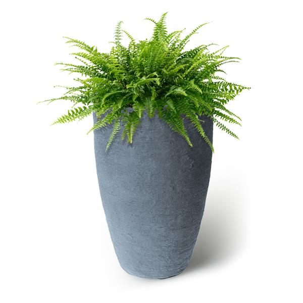 """Algreen Products Athena Self-Watering Planter - 24"""" x 15"""" - Charcoal"""
