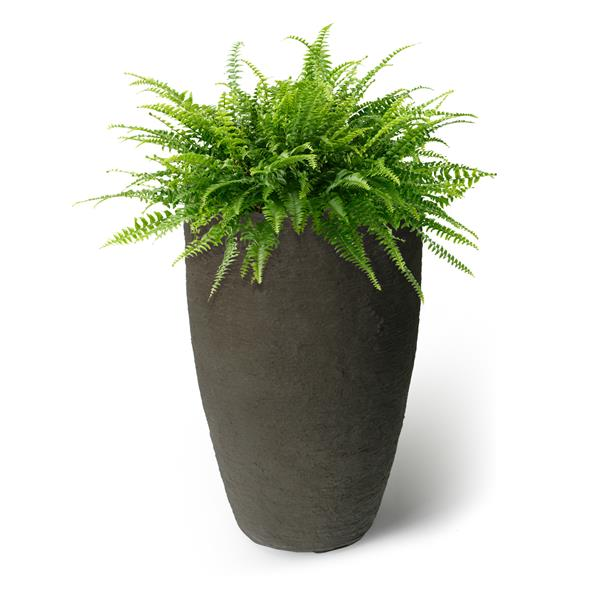 "Algreen Products Athena Self-Watering Planter - 24"" x 15"" - Brown"