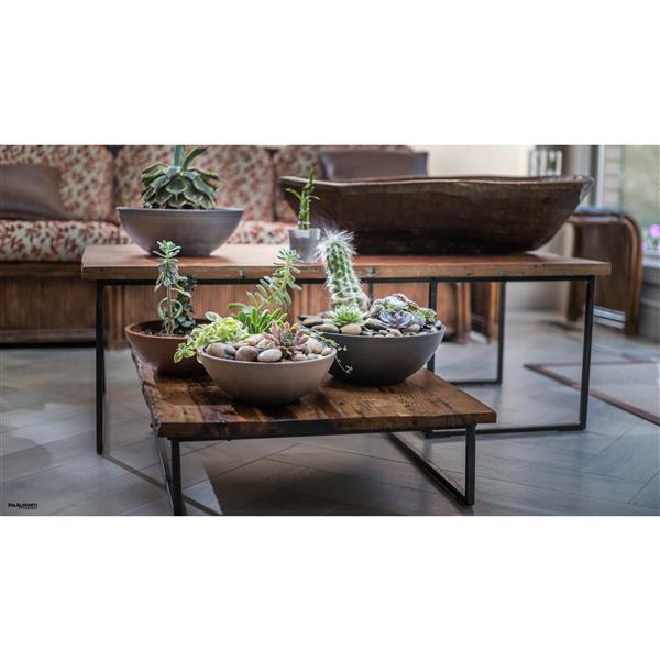 "Algreen Products Valencia Bowl Planters - 12"" x 4.75"" - Chocolate - 2 pcs"