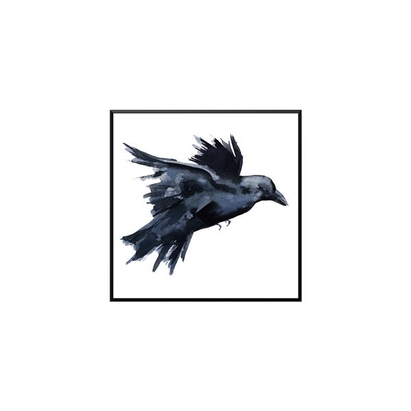 Stella.B Decor TARA Framed Canvas with Black Frame - Crow - 28-in x 28-in
