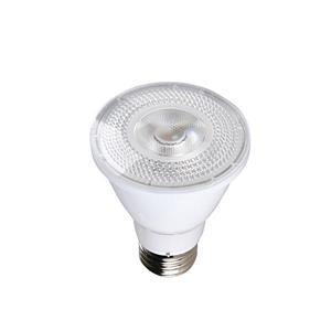 Ampoule à DEL PAR20 SmartRay(MD), blanc