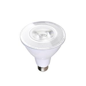 Ampoule DEL PAR30 SmartRay, blanc