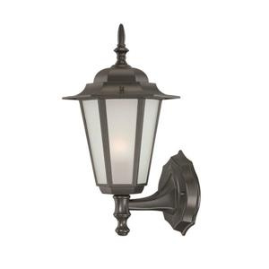 "Acclaim Lighting Camelot 1-Light Wall Mount Lantern - 8"" x 14.5"" - Black"