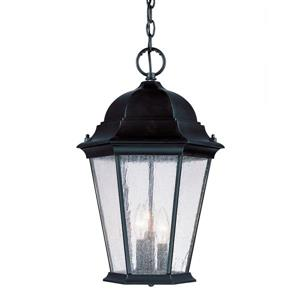 "Acclaim Lighting Richmond 3-Light Hanging Lantern - 18.5"" - Black"