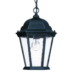 "Acclaim Lighting Richmond 1-Light Hanging Lantern - 14"" - Black"