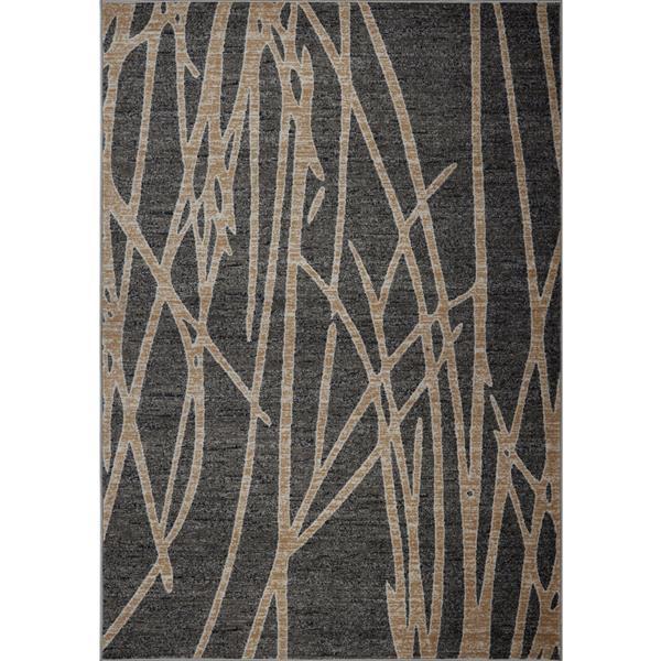 Tapis moderne de La Dole Rugs(MD), 4' x 6', gris foncé