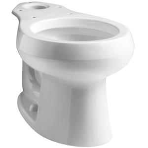 Wellworth Toilet Bowl - 51.3