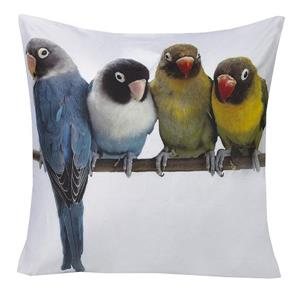 Urban Loft by Westex Budgies Print Decorative Cushion - 20-in x 20-in - Multicoloured