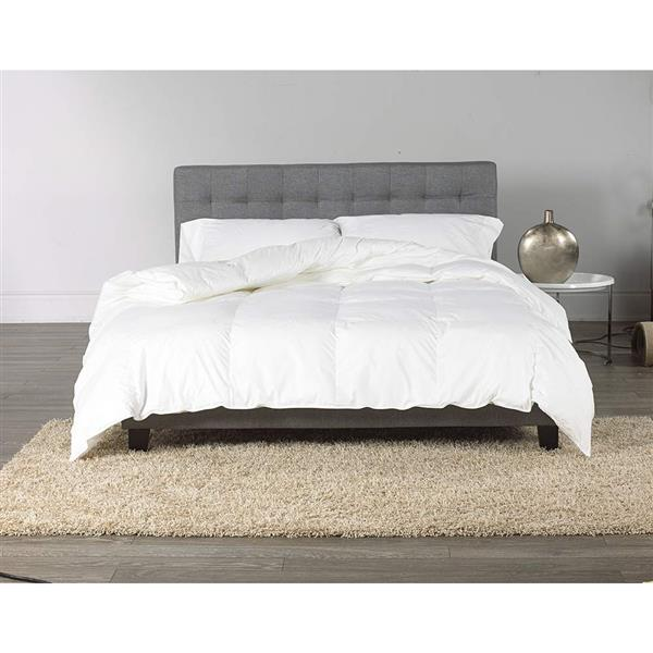Sleep Solutions by Westex Canadian White Down and Feather Comforter - King - White