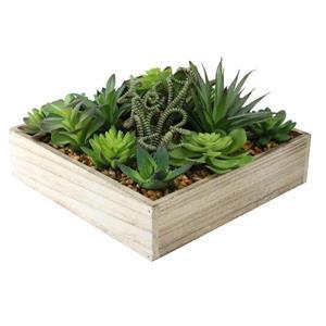 Northlight Artificial Succulent Plant Arrangement in a Garden Box