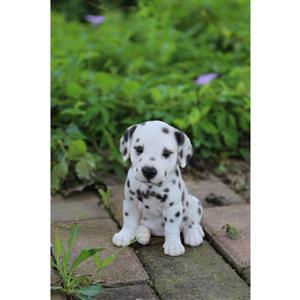 "Hi-Line Gift Decorative Garden Statue - Dalmatian Puppy - 6.5"""