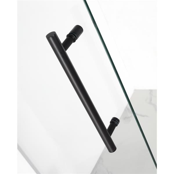 Turin Vertiges Shower Door (10 mm) 36-in x 48-in - Black