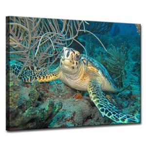 Ready2HangArt Wall Art Turtle Canvas 24-in x 32-in - Blue