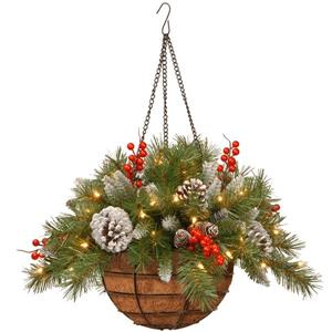 "National Tree Co. Frosted Berry Hanging Basket with LED Lights - 20"" - Green"