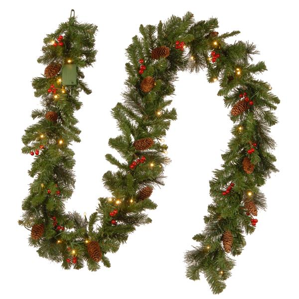 National Tree Co. Crestwood Spruce Garland with LED Lights - 9' - Green