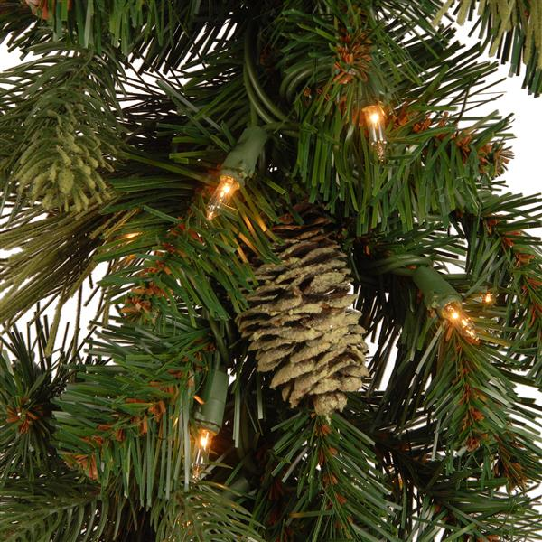 National Tree Co. Carolina Pine Garland - Battery Operated LED Lights - 9'