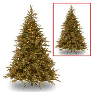 Frasier Grande Christmas Tree with Colour LED Lights - 9-ft - Green