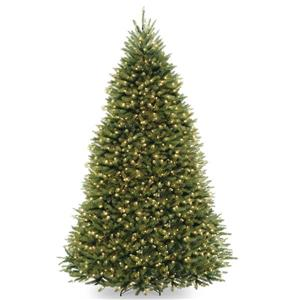 PowerConnect Dunhill® Fir Christmas Tree with LED Lights - 9-ft - Green