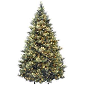 Pin de Noël Carolina avec lumières transparentes, 7,5 pi, vert