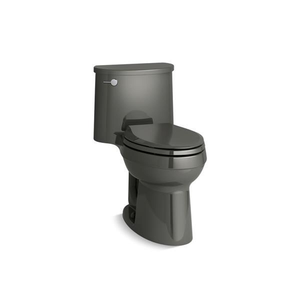 Toilette monobloc Adair de KOHLER, grise