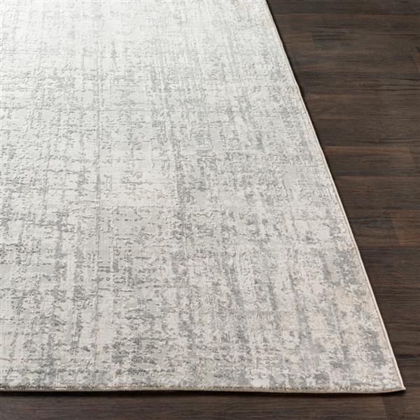 Surya Aisha Modern Area Rug - 2-ft 7-in x 5-ft - Rectangular - Grey