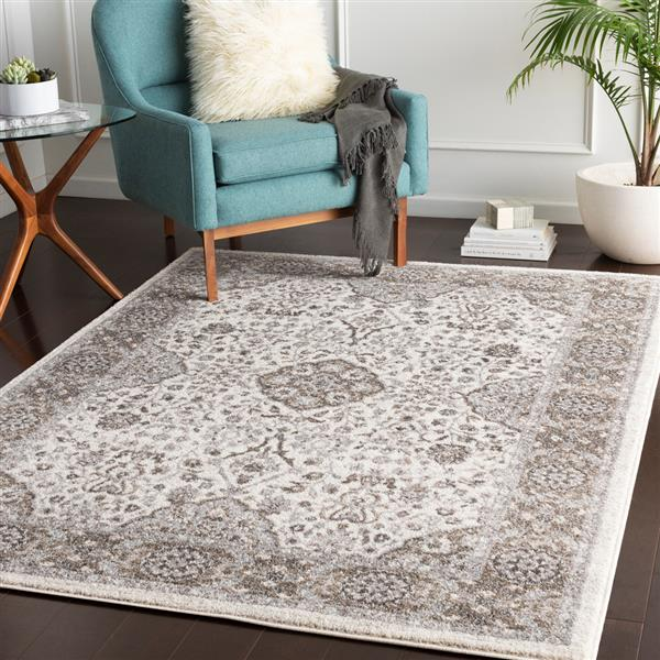 Surya Agra Updated Traditional Area Rug - 5-ft 3-in x 7-ft 3-in - Rectangular - Grey