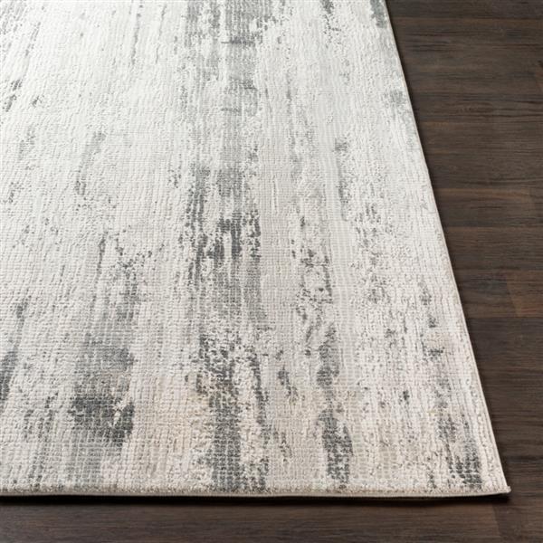Surya Aisha Modern Area Rug - 6-ft 7-in x 9-ft 6-in- Rectangular - Grey