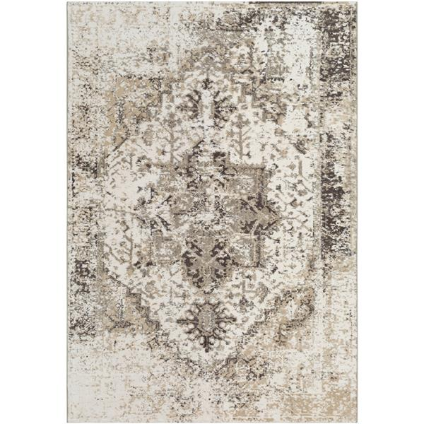 Surya Apricity Updated Traditional Area Rug - 5-ft 3-in x 7-ft 6-in - Rectangular - Taupe