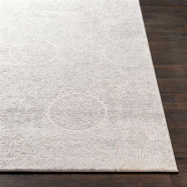 Surya Aisha Updated Traditional Area Rug - 7-ft 10-in x 10-ft 3-in - Rectangular - Grey