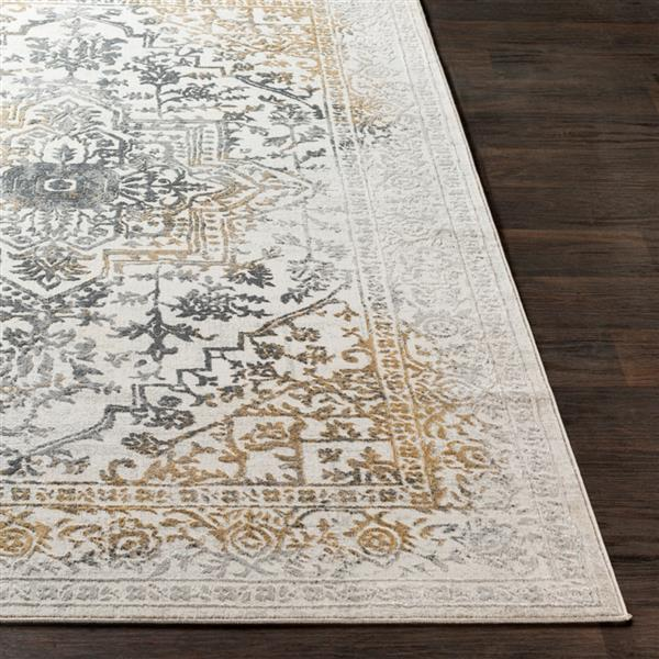 Surya Aisha Updated Traditional Area Rug - 7-ft 10-in x 10-ft 3-in - Rectangular - Charcoal