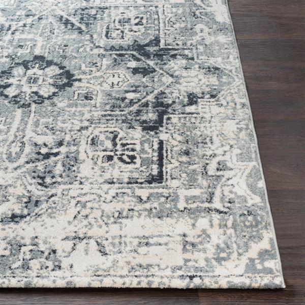 Surya Apricity Updated Traditional Area Rug - 5-ft 3-in x 7-ft 6-in - Rectangular - Grey