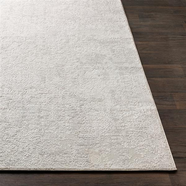 Surya Aisha Updated Traditional Area Rug - 9-ft 3-in x 12-ft 3-in - Rectangular - Grey