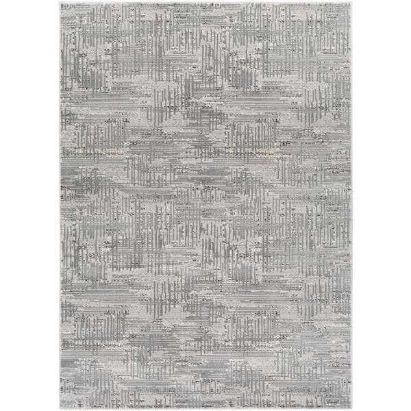 Surya Amadeo Modern Area Rug - 5-ft 3-in x 7-ft 3-in- Rectangular - Grey