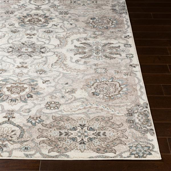 Surya Agra Updated Traditional Area Rug - 5-ft 3-in x 7-ft 3-in - Rectangular - Taupe