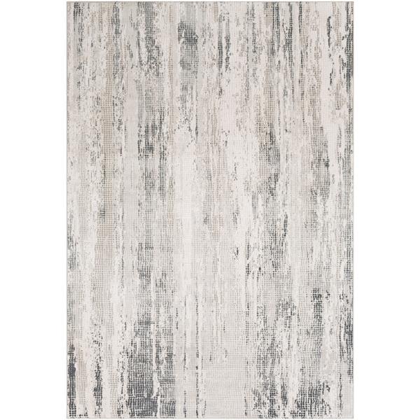 Surya Aisha Modern Area Rug - 9-ft 3-in x 12-ft 3-in- Rectangular - Grey