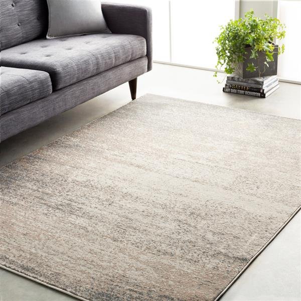 Surya Amadeo Modern Area Rug - 6-ft 7-in x 9-ft 2-in- Rectangular - Cream