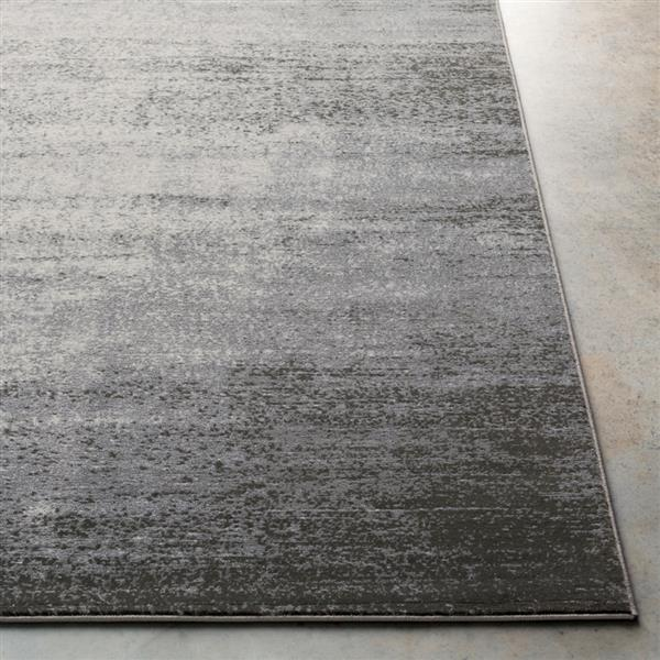 Surya Amadeo Modern Area Rug - 5-ft 3-in x 7-ft 3-in- Rectangular - Grey
