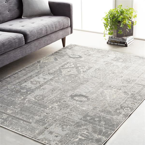 Surya Amadeo Updated Traditional Area Rug - 7-ft 10-in x 10-ft 2-in - Rectangular - Silver