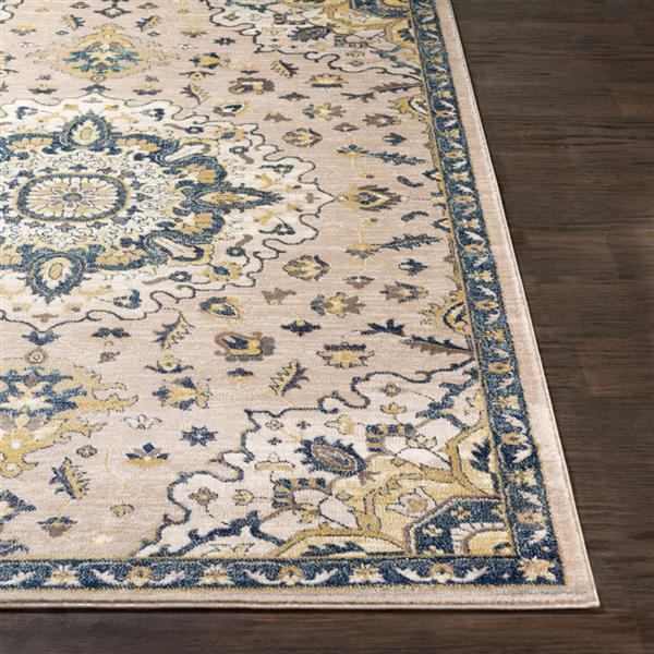 Surya Athen Updated Traditional Area Rug - 7-ft 10-in x 10-ft 3-in - Rectangular - Ivory