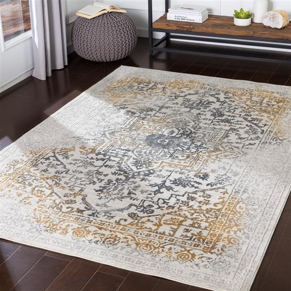 Surya Aisha Updated Traditional Area Rug - 6-ft 7-in x 9-ft 6-in - Rectangular - Charcoal